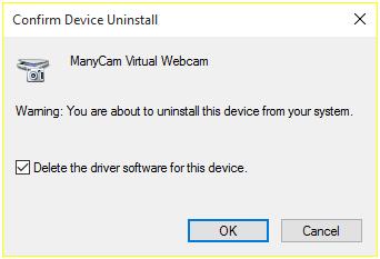 webcam download windows 10